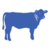 beef-ardnacross-farm-shop-self-catering-accommodation-mull