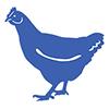 eggs-ardnacross-farm-shop-self-catering-accommodation-mull